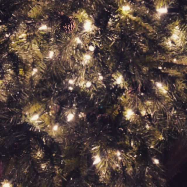 There is something so magical about Christmas lights. Is it the soft glow? The light mixed with the boughs of the tree? Is the anticipation of quiet evenings around the tree with loved ones? Who knows….. but it's magical!